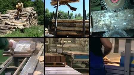 лесоматериалы : Timber and lumber industry. Tree log transportation. Floor parquet wood board production in factory. Montage of video clips collage. Split screen. Black angular frame. Full HD 1080p. Стоковые видеозаписи