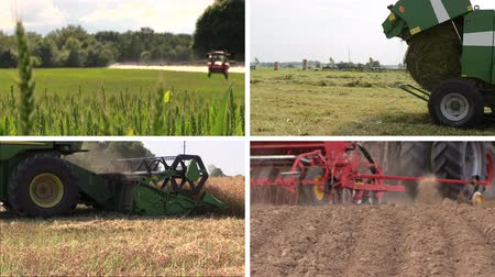 cultivo : Tractor spray field make sodder grass bales harvest wheats and fertilize soil. Agriculture works. Montage of video clips collage. Split screen. White angular frame. 4K UHD 2160p