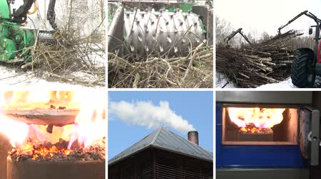 kolaj : Special equipment crush tree branches for biofuel. Burning wood granules in boiler. Smoke rise from chimney. Montage of video clips collage. Split screen. White angular frame. Full HD 1080p. Stok Video
