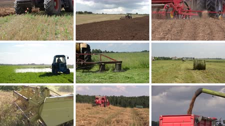 cultivo : Heavy agriculture equipment machines work in fields. Tractor plow spray field cut grass harvest wheat. Montage of video clips collage. Split screen. White angular frame. 4K UHD 2160p