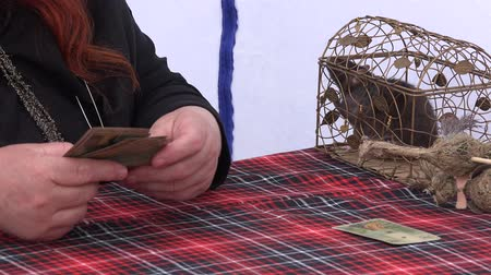 astrologer : Old woman pull tarot cards from fortune-teller hands and fat black rat in small cage. Static closeup shot. 4K