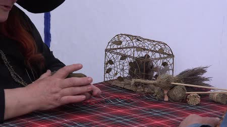 astrologer : Fortune teller woman shuffle tarot cards and rat in small cage in outdoor tent. Static closeup shot. 4K