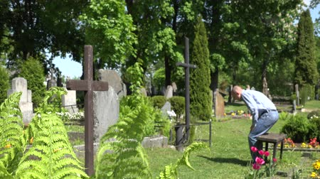 temető : Young depressed son man visit mother grave in cemetery. Sad boy pray in graveyard. Focus on fern plants in graveyard. Static blurred shot. 4K