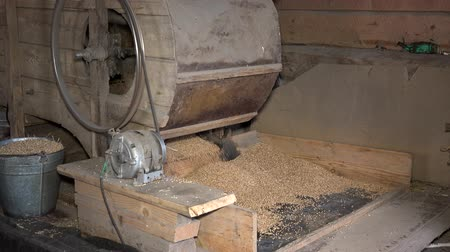 thrash : Retro automatic handmade machine sifting grain in barn. Closeup