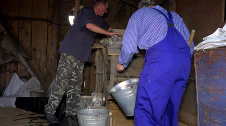 otruby : Two men sifting grain with vintage machine in rural farm barn