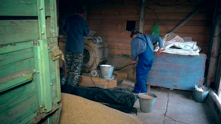 thrash : Agriculture summer end works. Men sifting grain with retro machine in barn