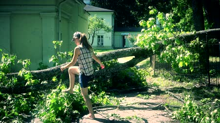 повреждение : Worried woman climbing over fallen tree on house yard entrance.