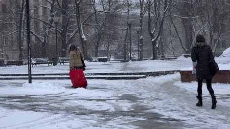 cityspace : VILNIUS, LITHUANIA - NOVEMBER 30, 2016: Woman walking with red travel trunk on wheels. Blizzard snow falling in winter. 4K