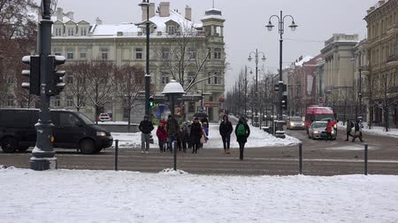 cityspace : VILNIUS, LITHUANIA - NOVEMBER 30, 2016: People walking zebra pedestrian crossing with traffic light and cars on snowy day in winter time. Blizzard snow falling in cityspace. 4K Stock Footage