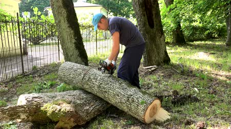 çabaları : Worker man sawing tree trunk into pieces with chainsaw. Stok Video
