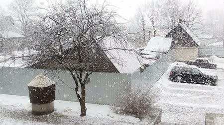 морозный : Large snow flakes are falling from the sky against Стоковые видеозаписи