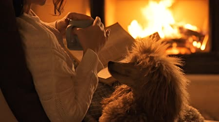hot beverage : Young woman with her dog sitting at home by the fireplace. Stock Footage