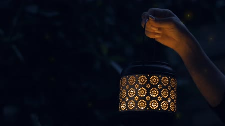 fireflies : Female hand hold lantern with magical lights of fireflies at night. Concept of romance.