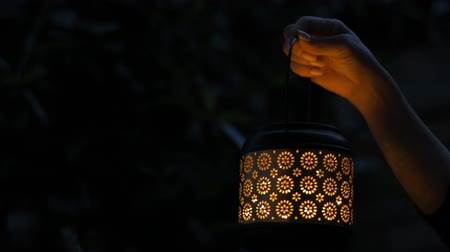 fireflies : Female hand holding the lantern.