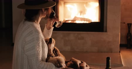 fireside : Woman with her dog sits at the floor and drinking wine. Stock Footage
