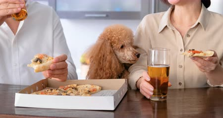 Couple with their dog eating pizza.
