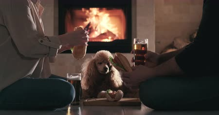 Couple have romantic dinner with hot dogs and beer. Dostupné videozáznamy