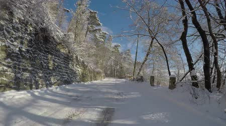 otopark : Car speeding on a beautiful forest road in winter Stok Video