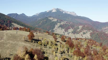 Autumn mountain forest panorama with rocky Ceahlau massif behind.