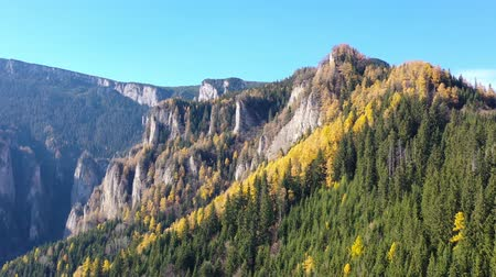 Autumn mountain landscape  with yellow larch tree and rock formation in the Carpathians