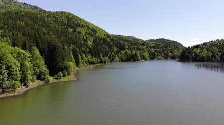 Flying above forest lake in the springtime. Cuejdel lake was born 30 years ago (a landfall on river Cuejdel) in Romania, Today is the biggest natural dam lake in Europe.