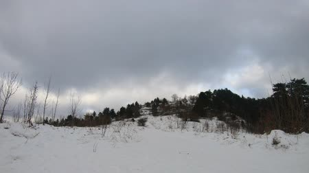 Forest time lapse in winter, moving clouds over the hill