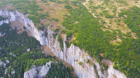 Aerial view of mountain forest (evergreen trees) and alpine meadow in the summer Dostupné videozáznamy