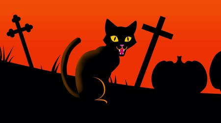 dia das bruxas : Halloween cat animation-Zoom out