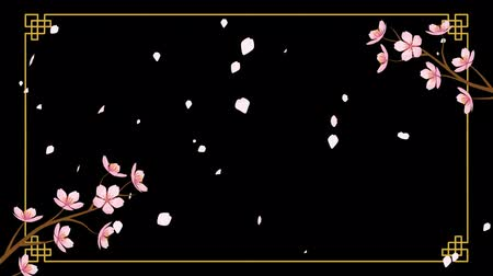 folyamatos : Alpha channel file-Growing Chinese styled line frame and Blooming Cherry blossom motion background with falling petals