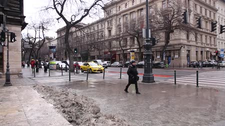 heroes square : BUDAPEST, 19 JANUARY 2019 View of central street in Budapest, Hungary Stock Footage