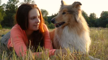 çim : Collie dog with young girl on green field at sunlight