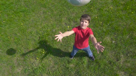 playfield : Boy throws up the ball, standing on green lawn Stock Footage