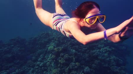 flippers : Girl dive in Red sea near coral reef