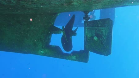 parafusos : Underwater view to yacht rudder and prop