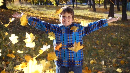 atma : Smiling boy throwing autumn leaves on park Stok Video