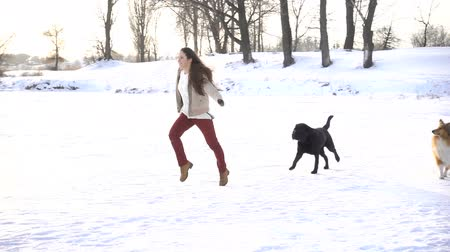 itaat : girl running with dogs on winter snow field Stok Video