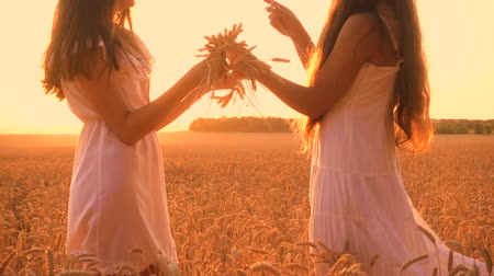 ткать : Two girls make a wreath of ears on wheat field