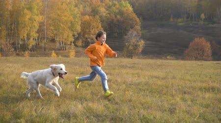 Girl running with golden retriever at field