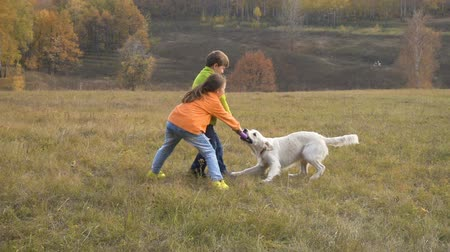 Two kids playing with golden retriever at field