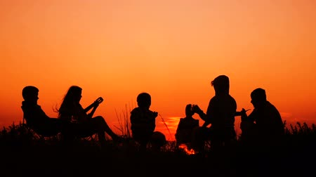 guitarrista : people sitting on the beach with campfire at sunset Vídeos