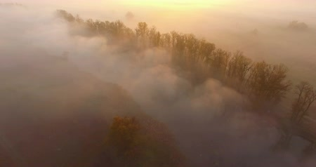 Aerial view of river under morning fog and golden hills, Ukraine