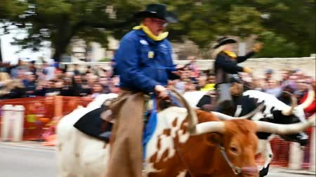 watching : San Antonio, Texas USA - February 3 2018: Men and women riding Texas Longhorn cattle past the historic Alamo during parade
