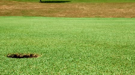 элита : Close up shot of golf putt on beautiful golf course - zoom out and ball drops into hole in green
