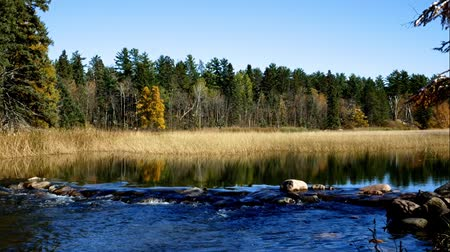 плотина : Lake Itasca held behind a man made dam at the headwaters of the Mississippi River at Lake Itasca State Park in Minnesota. Стоковые видеозаписи