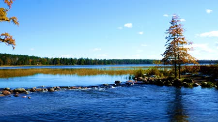Lake Itasca held behind a man made dam at the headwaters of the Mississippi River at Lake Itasca State Park in Minnesota. Стоковые видеозаписи