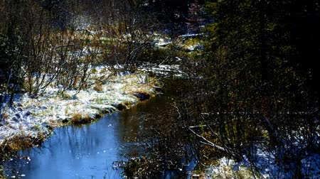 żródło : Mississippi River is seen flowing north, about nine miles from the source, Lake Itasca. Clip taken from third highway bridge over the river in northern Minnesota.