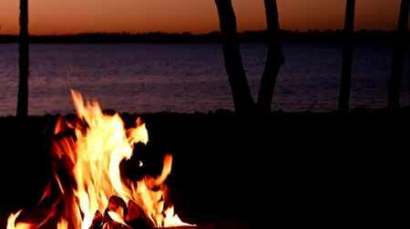 coals : Beautiful lakeside campfire closeup just after sunset with trees along shoreline and ripples on lake Stock Footage