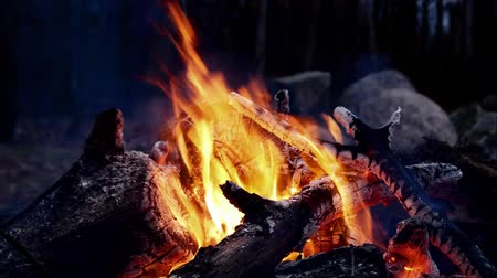 kamp ateşi : Closeup of Campfire Bonfire ablaze at night with hot embers and red coals in flames