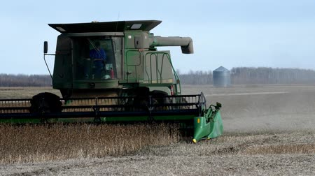 GRYGLA, MN - NOVEMBER 2, 2018: John Deere Combine harvesting field of soybeans for food and other products. John Deere is a brand of agricultural, construction and forestry machinery.