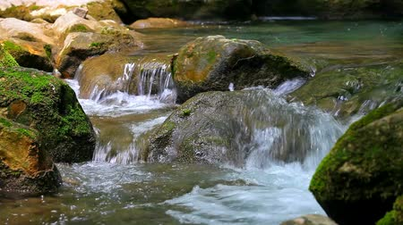 воды : Scenic view of small waterfall in summer forest Стоковые видеозаписи